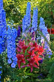 1462 best in the garden images on pinterest flowers beautiful