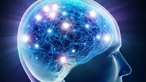 wiring of autistic brains shown to be highly individualized