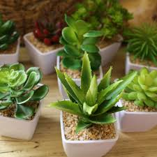 compare prices on plastic office plants online shopping buy low
