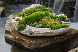 Indoor Rock Garden - moss dish gardens moss and stone gardens