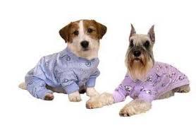 pink blue purple yellow sweet dreams pajamas pajamas