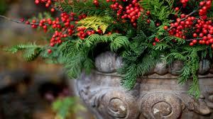 Outdoor Christmas Decorations Urns by Urn Decorating Workshop U2014 Julie U0026 Company