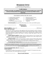 Professional Profile For Resume Auguste Comte Early Essays Best Phd Critical Analysis Essay