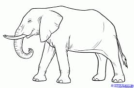 coloring pages elephant drawing image 6ir5dgoat coloring pages