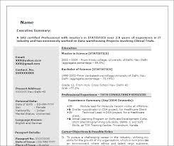sas programmer developer free resume template