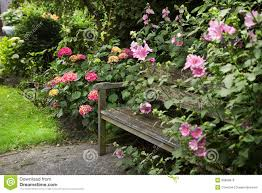 country style garden with bench royalty free stock images image