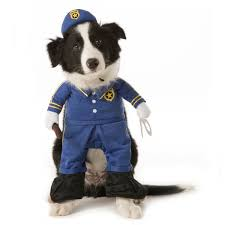 Dog Minion Halloween Costumes Halloween Dog Costume Ideas 32 Easy Cute Costumes