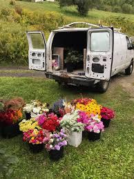 Wholesale Flowers Florists U2014 Stitchdown Farm