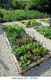 Garden Plot Layout Garden Plot Layout Garden Plan Raised Garden Plot Layout