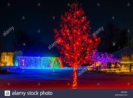 hudson gardens christmas lights tunnel lights hudson christmas holiday stock photos tunnel lights