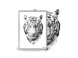 poster white tiger black white black white posters categories