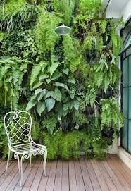 Interior Plant Wall Artificial Vertical Garden Green Wall Green Walls Horticulture