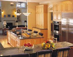 home triangle kitchen