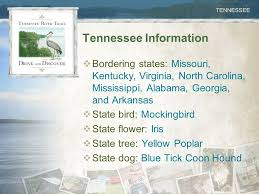 bluetick coonhound mississippi tennessee history ppt video online download