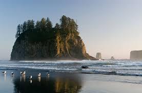 Washington beaches images Forks wa hub of washington coast on the olympic peninsula jpg