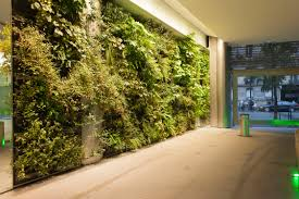 House Decorator Online Interior Design Beautiful Natural Indoor Green Wall Design Ideas