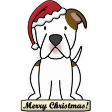 367 best american bulldog images on american bulldogs