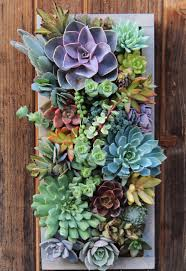 Vertical Succulent Garden Indoor - be right back getting lost inside this succulent planter plants