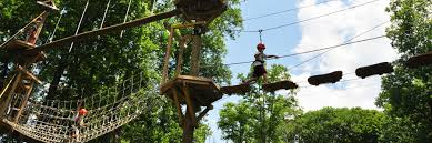 ziplining tours u0026 adventure courses in laurel highlands pa