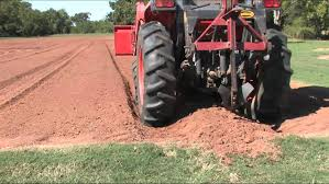 planting onion seed oct 2011 the vegetable garden youtube