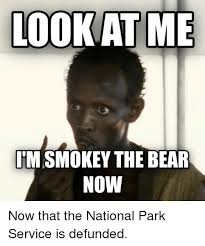 Only You Can Prevent Forest Fires Meme - smokey the bear meme generator the best of the funny meme