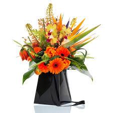 flowerbox 8