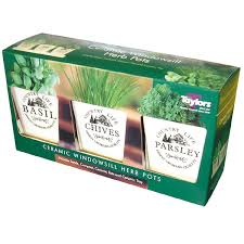 Windowsill Herb Pots On Sale Fast Delivery Greenfingers Com
