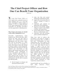 One Organization The Chief Project Officer And How One Can Benefit Your Organization