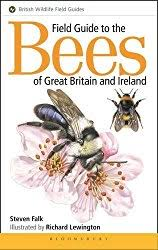 types bees kinds bees including