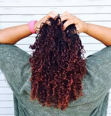 Best Deep Conditioner For Colored Natural Hair The Mane Objective How To Get The Perfect Wash And Go Curls On