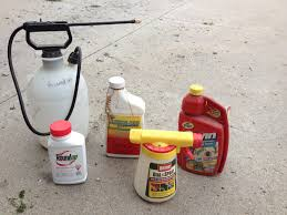winterizing garden equipment plants and pests with nicole