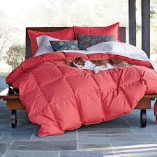 Cal King Down Comforter Archive With Tag Colored Down Comforters King Size Mbnanot