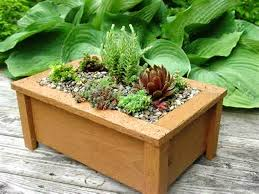 Patio Planter Box Plans by Best Planter Box Ideas Best Home Decor Inspirations