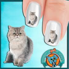 silver persian cat nail art decals now 50 more free u2013 patch puppy