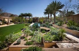 agreeable cool desert landscaping ideas design a desert