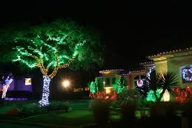 hanging lights on outdoor trees fortmas