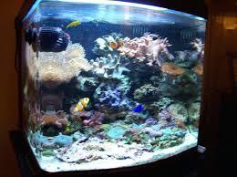 aquarium lights for sale led aquarium lights for sale aquarium led lights for sale in india