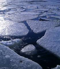 Station Closest To Winter The Arctic Just Finished Its Warmest Winter