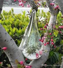 Flowers For Home Decor Dia 9cm X H 18cm Teardrop Glass Plant Terrariums Hanging 10cm