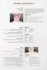 stunning examples of creative cv resume with creative resume examples