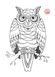tribal owl tattoo black outline owl tattoo stencil photos pictures and sketches