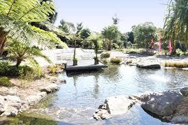 wollongong botanic gardens the australian botanic garden mount annan wedding venues mount