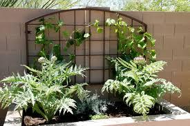 custom metal gardening trellis arizona trellis u2013 gardening trellises