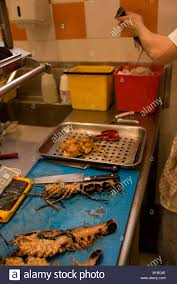 cuisine valence food being prepared in the kitchens of the maison pic restaurant in