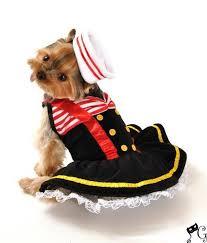 Large Dog Halloween Costume Ideas 52 Dog Costume Ideas Images Costume Ideas Dog