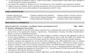 resume sample of resume basic resume examples college students