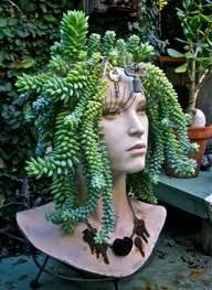 creative indoor and outdoor succulent garden ideas mannequin