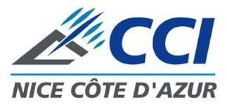 chambre de commerce alpes maritimes elections 2010 des cci côte d azur et paca l upe 06 désigne