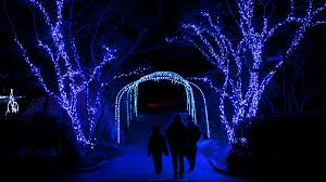 Zoo Lights Schedule by Zoolights Now Open At National Zoo Nbc4 Washington
