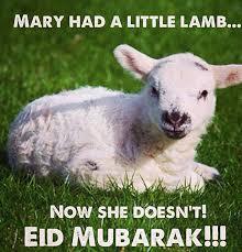 Eid Memes - shiachat memes official thread page 56 off topic shiachat com